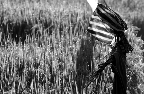 Scarecrow, Ubud