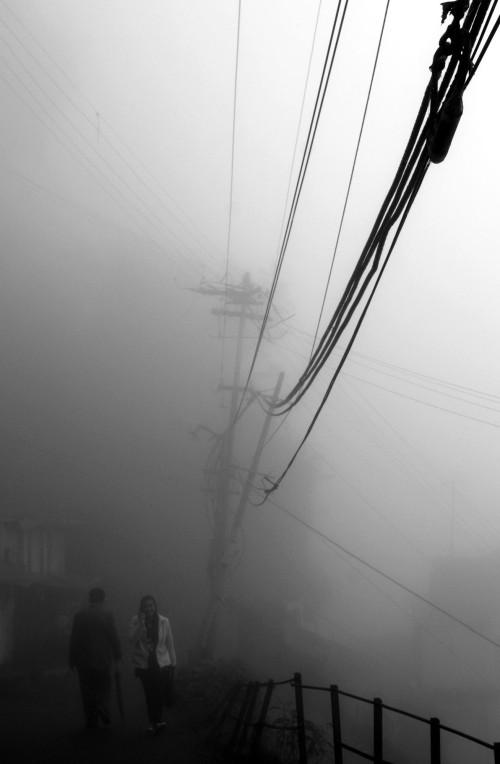Heavy Fog, Darjeeling, April 210