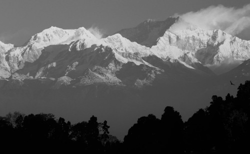 Katchenjunga from Darjeeling