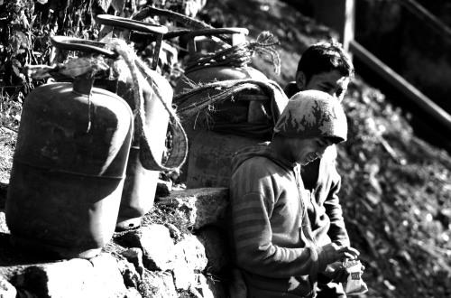 Darjeeling bearers