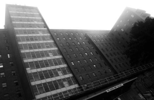Dead hospital