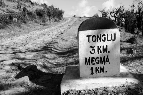 Tonglu / Megma