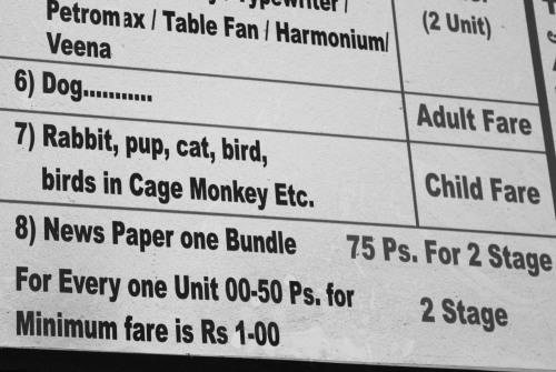 monkey etc