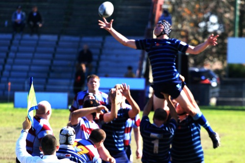 1028 Local rugby union