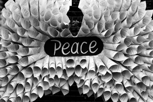 5083 Peace, bro
