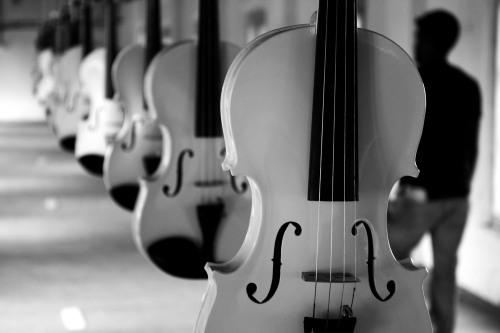 0023 Violins Biennale, Kochi
