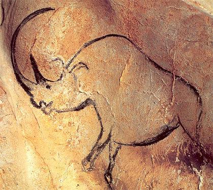 Chauvet cave rhino