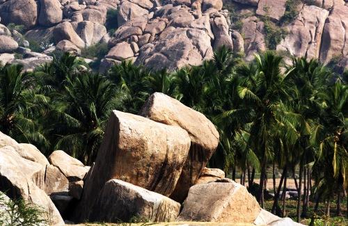 2851 Hampi stones and palms