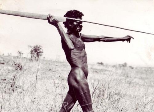 aboriginal spear