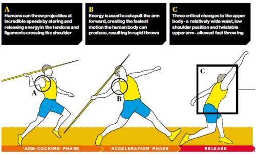 Throwing diagram