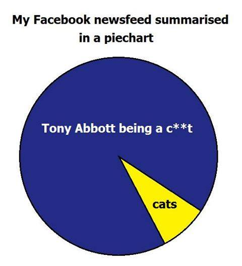 facebook feed piechart