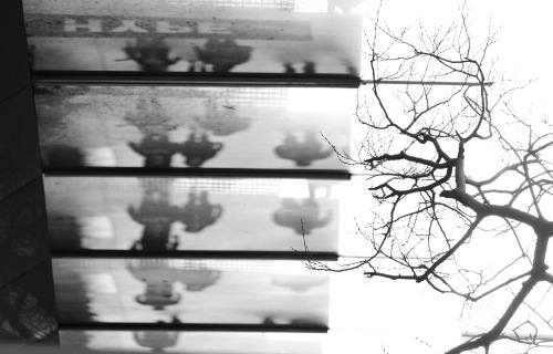 4909 Frames, broadway