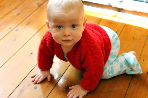 Magnus - dangerously cute infant Homo Sapiens