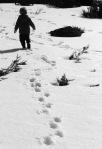 0848 Magnus trudging through the snow2