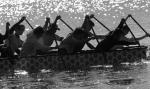 1232 Dragon Boats