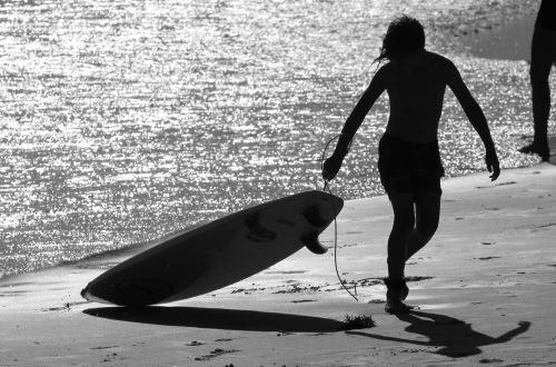 2792 Bondi Beach 2